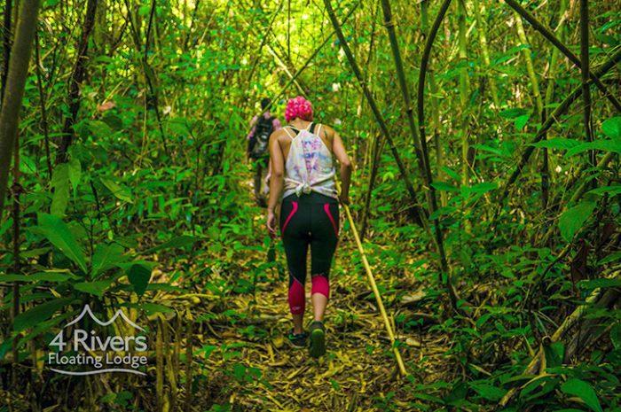 Rivers Lodge Jungle Trek