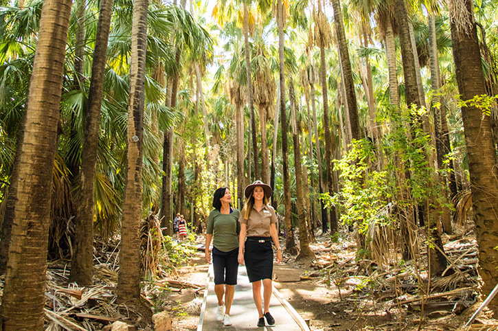 Mataranka, Northern Territory, Australia
