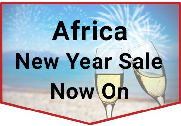 New Year Sale Africa Widget