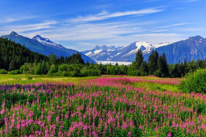 National Park, Alaska