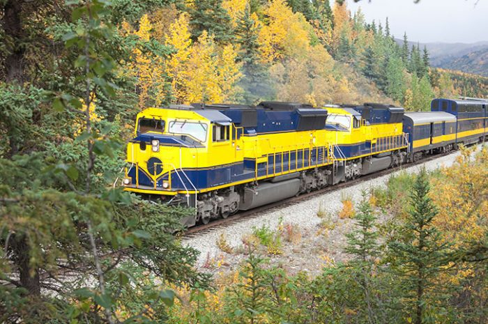 Alaska Railroad Journey