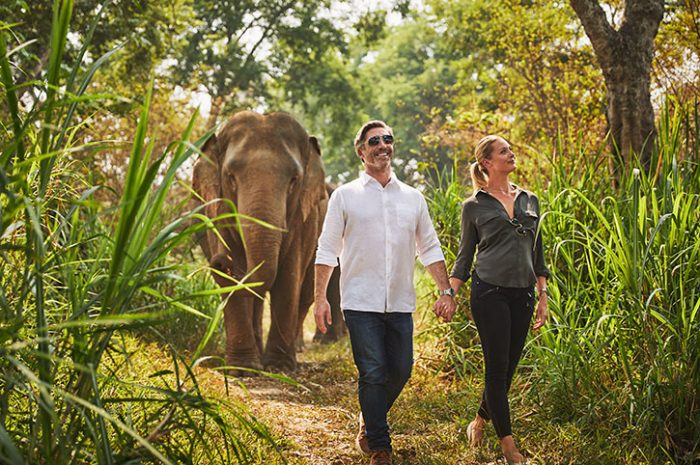 Anantara Golden Triangle walking with elephants