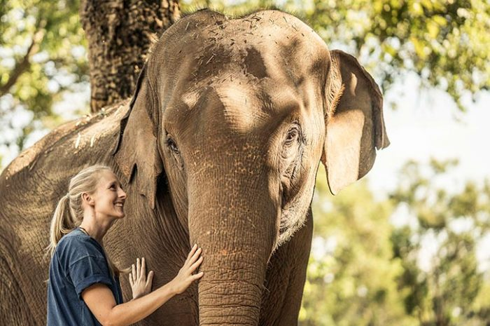 Anantara Golden Triangle Elephant Experience