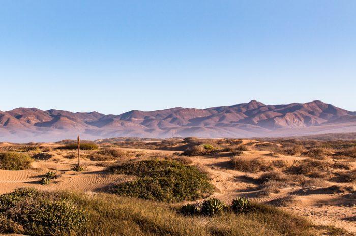 Desert, Baja California