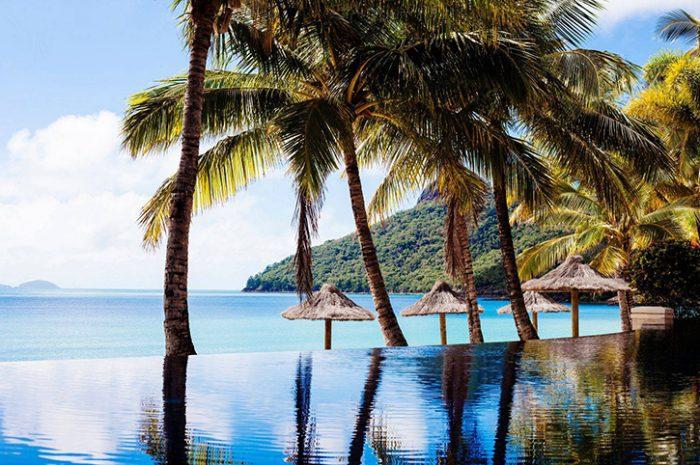 Beach Club Pool Landscape