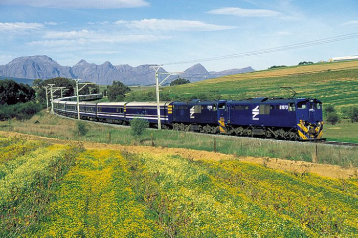 Blue Train surrounded by flowers