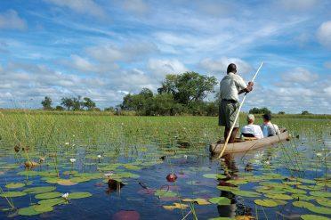 Makoro in Okavanago