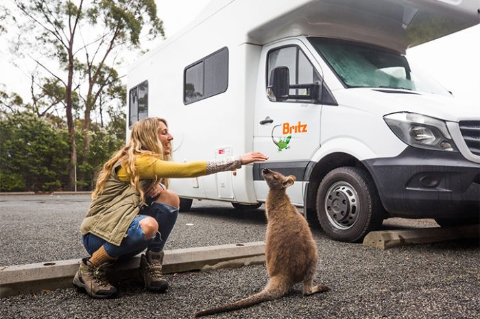 Britz Frontier Kangaroo