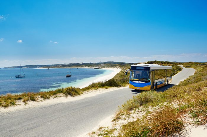 Bus Tour On Rottnest Island