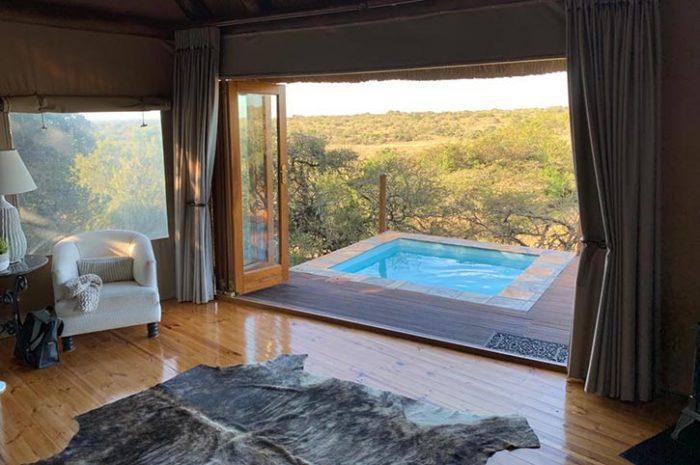 Bush Lodge Luxury Tent Plunge Pool