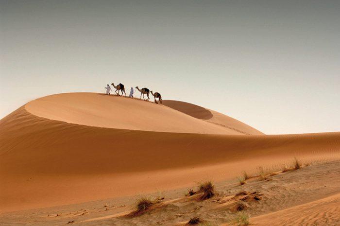 amels in the desert Abu Dhabi