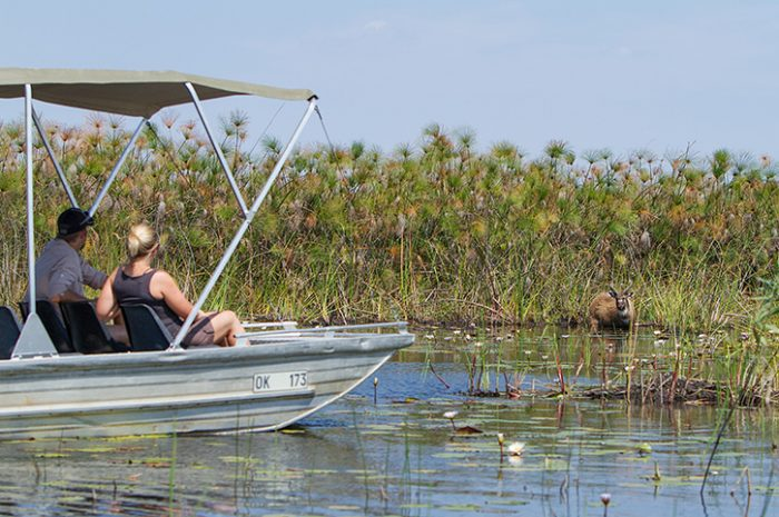 Camp Okavango Delta Cruise