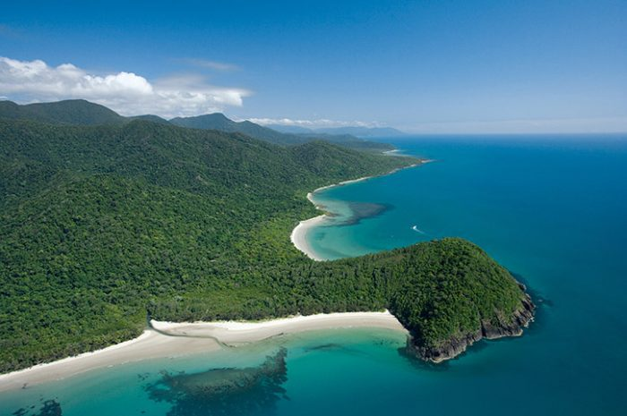 Cape Tribulation View, Queensland