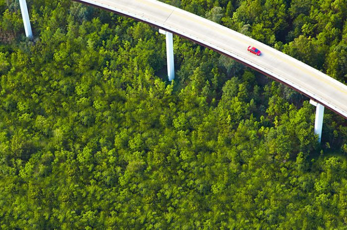 Aerial View Of Overpass And Forest