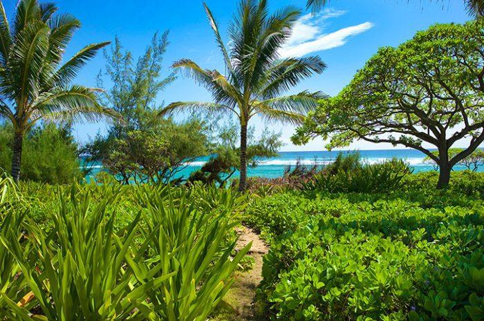 Castle Kaha Lani Sea View