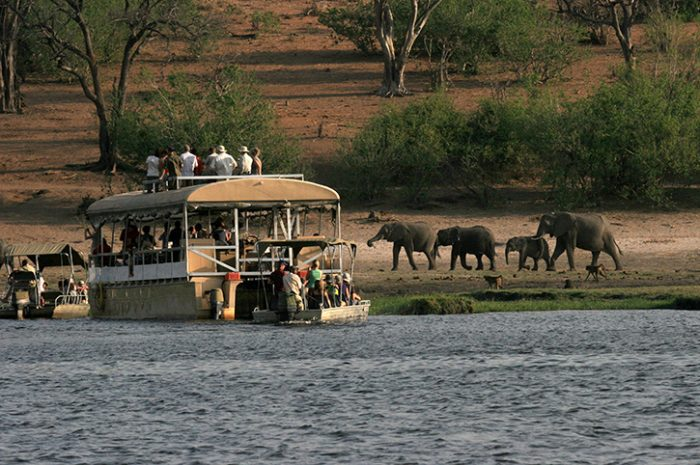 Chobe Safari Lodge River Cruise