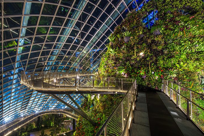 Cloud Walk At Night, Gardens By The Bay