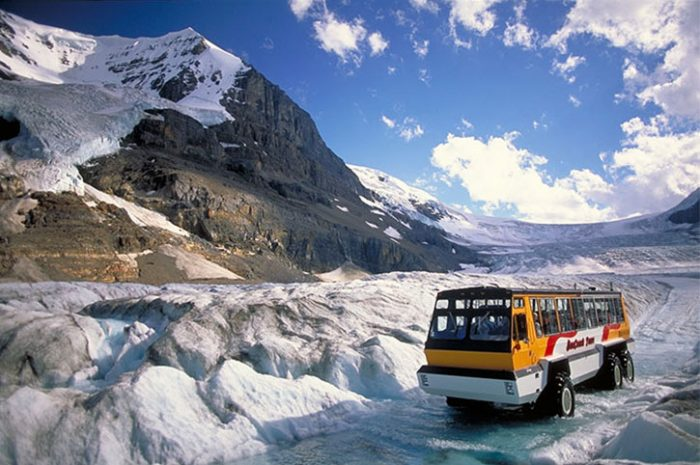 Icefields, Rocky Mountains