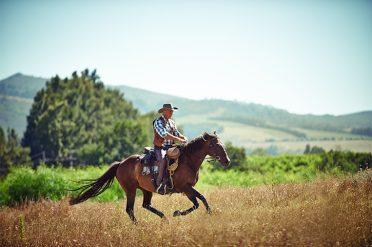 Cowboy at Texas Ranch