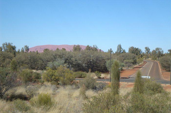 Desert Gardens Rock View