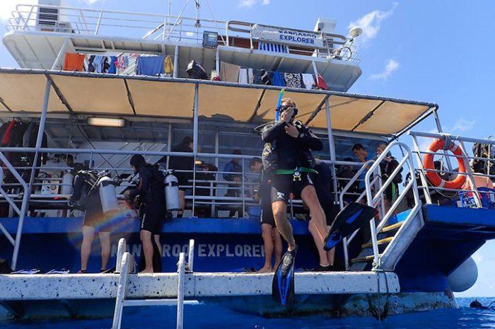 Divers On The Kangaroo Explorer