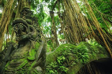 Dragon Bridge, Monkey Forest, Ubud, Bali