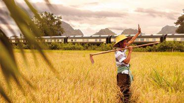 EasternOrientalRail Thailand