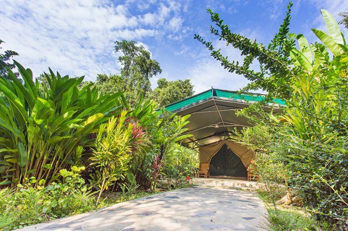 Elephant Hills Luxury Tent