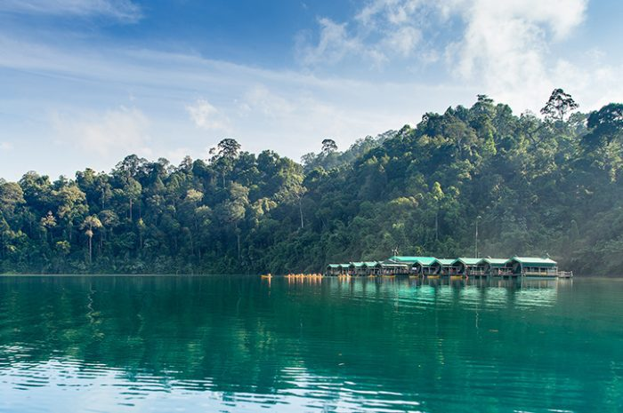Elephants Hill Rainforest Camp