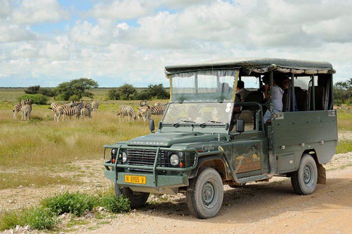 Etosha Village Game Drive