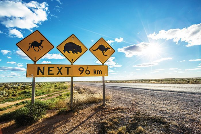 Eyre Highway, Nullarbor