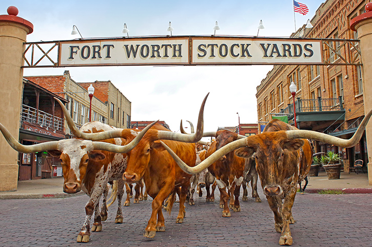 Fort Worth Stockyards, Texas, USA