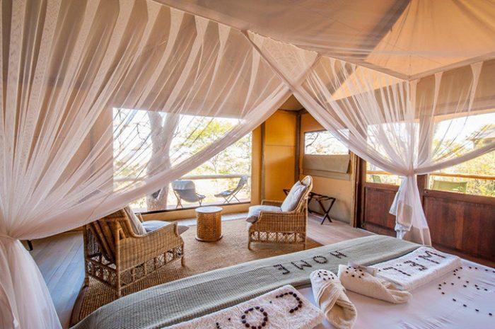 Ghoha Hills Luxury Tent