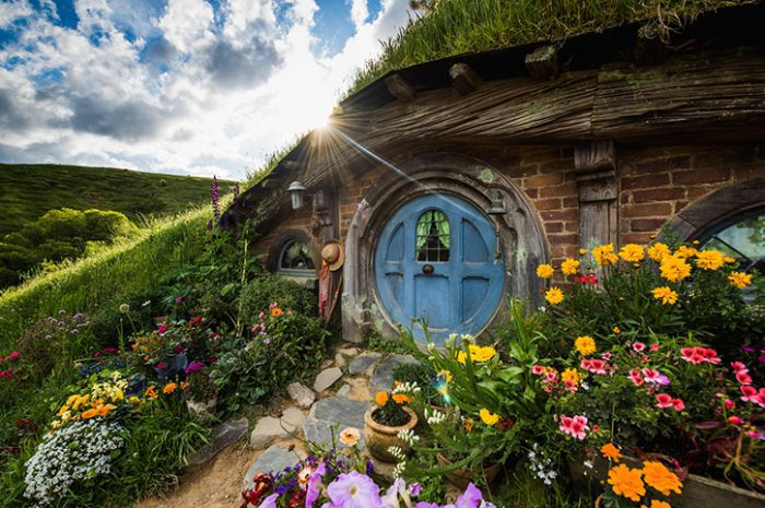 Hobbiton Hole