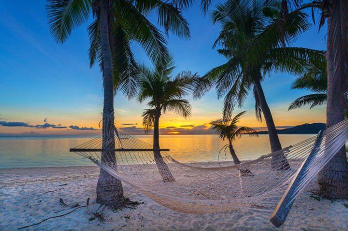 Hammock On A Fijian Beach