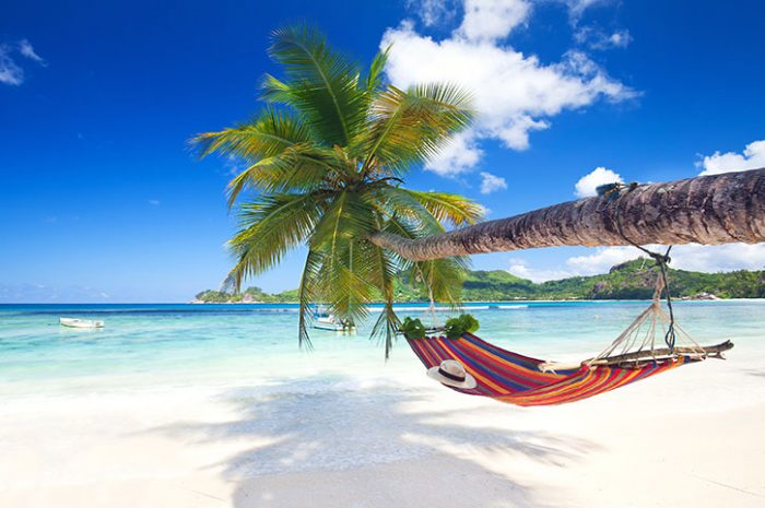 Hammock On The Beach, Seychelles