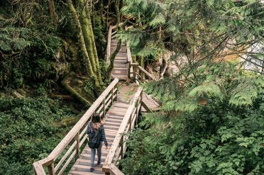 Hiking In Tofino National Park, Canada