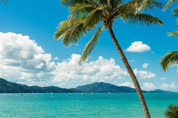 Holiday Homes Catseye Beach