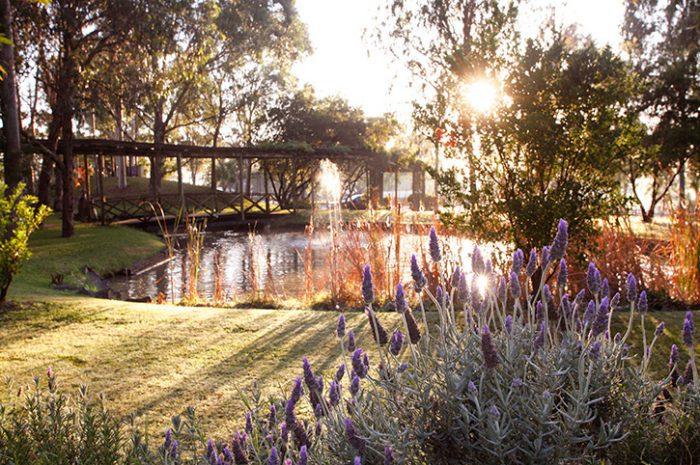 Hunter Valley Resort Garden