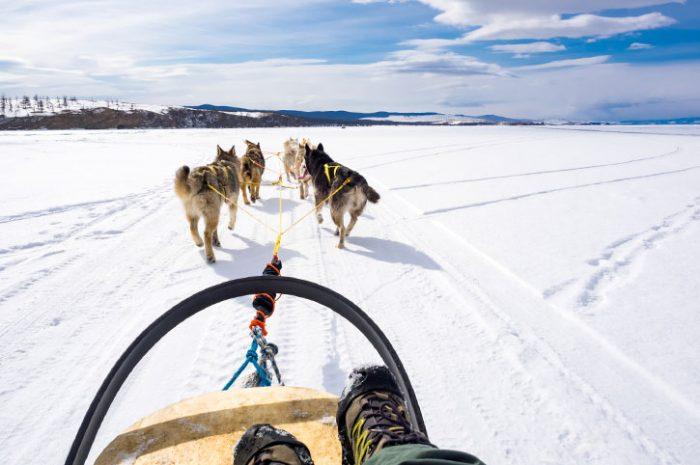 Husky Ride, Canada