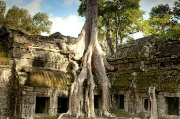Ta Prohm Siem Reap