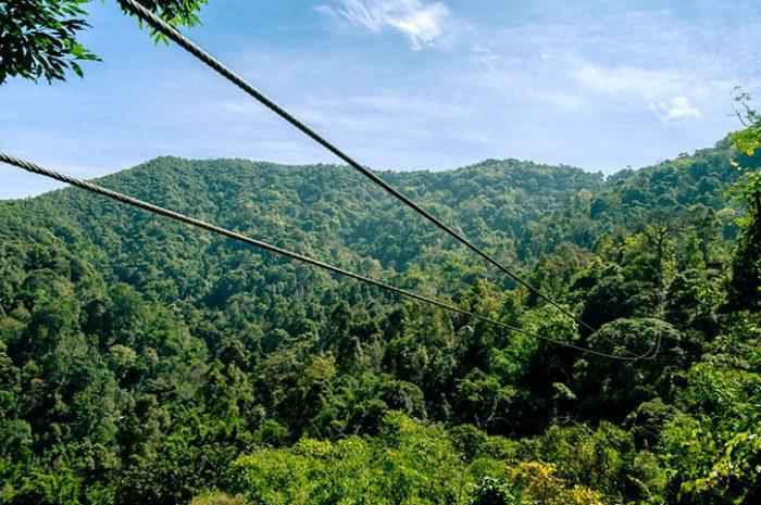 Zipline Treetop Adventure Thailand
