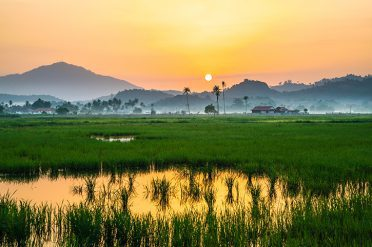 Malaysia Countryside