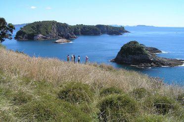 Kiwi Dundee Coastal Walk