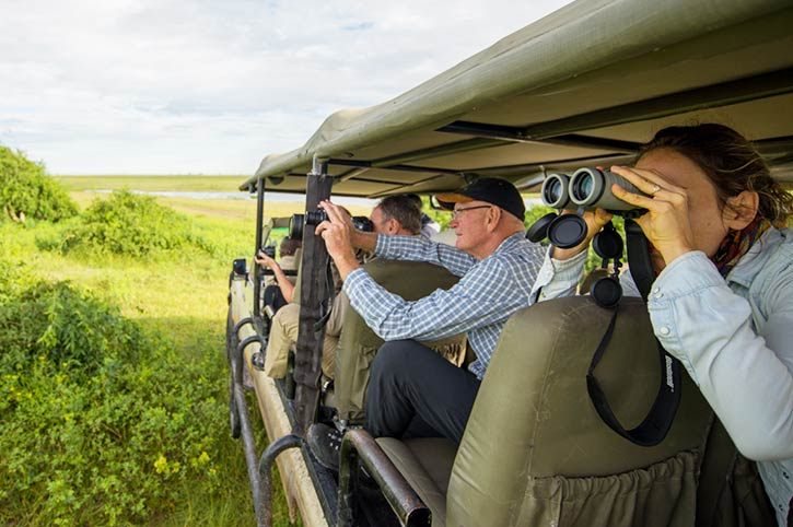 Game drive, Chobe National Park