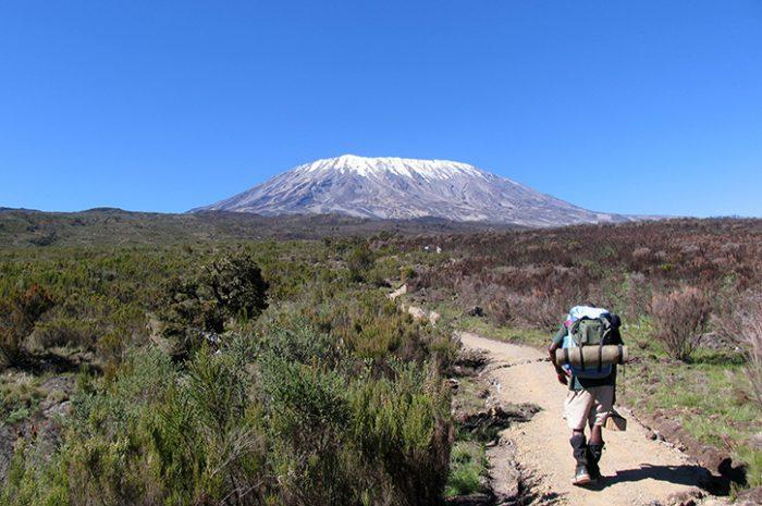 Kilimanjaro climber