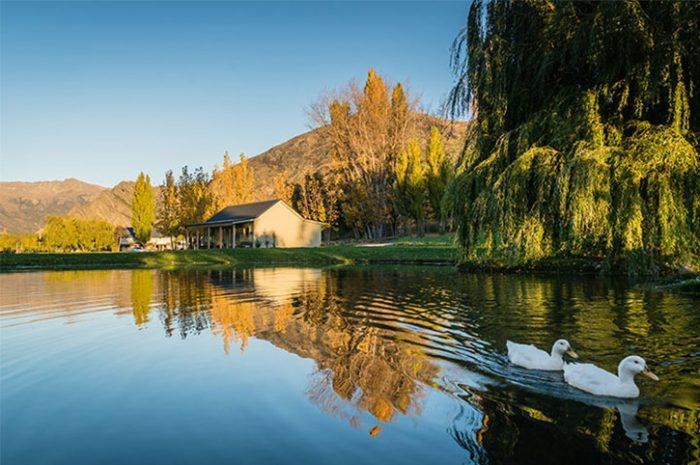 Kinross Cottages Autumn