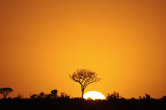 Sunset, Kruger National Park