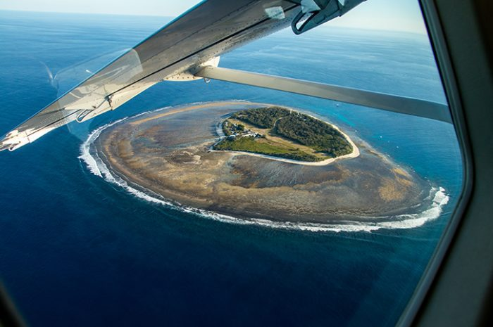 Lady Elliot Island Aerial