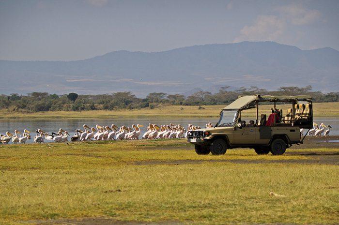 Lake Nakuru game drive Mbweha Camp